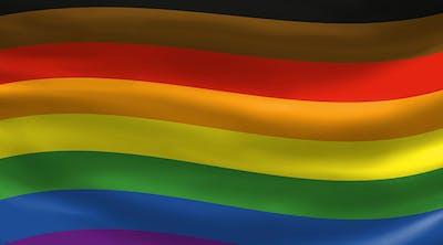 More Color More Pride flag
